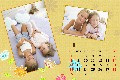 Baby & Kids photo templates Baby Calendar-4