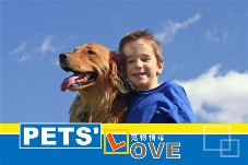 Others photo templates Pet Love