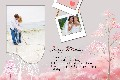 Family photo templates Happy Birthday Cards (2)